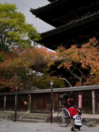 2010_石塀小径・秋_645D_34.jpg