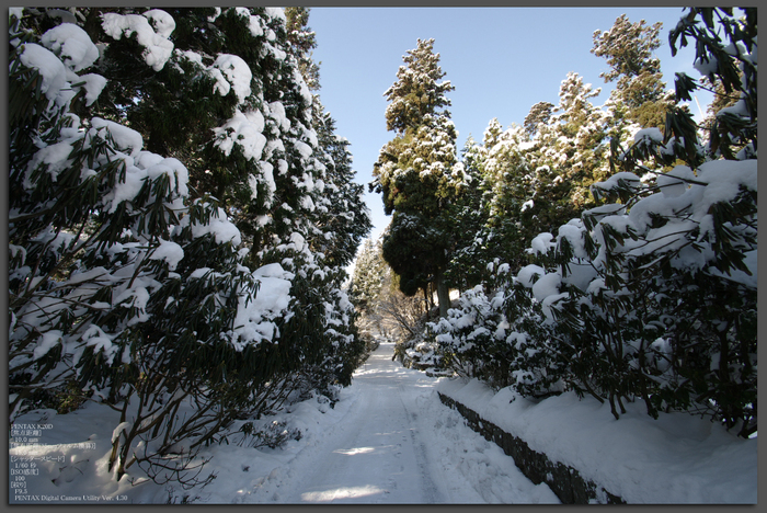 2011_比叡山・冬_top3.jpg