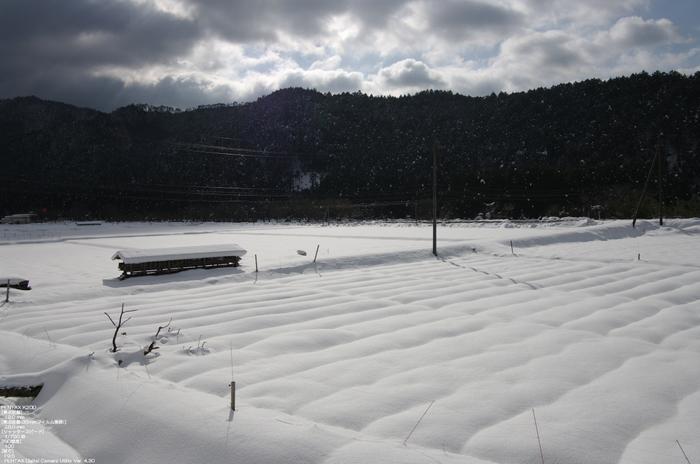 2011_美山_雪_40.jpg