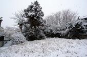 20110211_雪_2.jpg