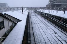 20110211_雪_7.jpg
