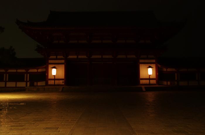 2011_なら瑠璃絵_9.jpg