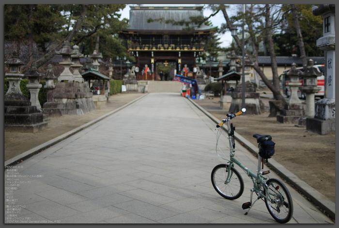 2011_北野天満宮・初梅_top1.jpg