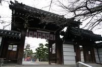 2011_3_道明寺・梅_1.jpg