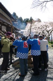 2011_4_三多気・桜_15.jpg