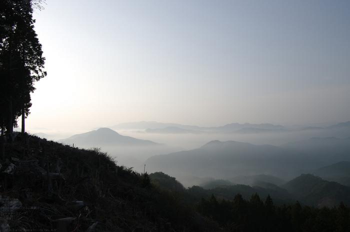 2011_4_屏風岩・桜_9.jpg
