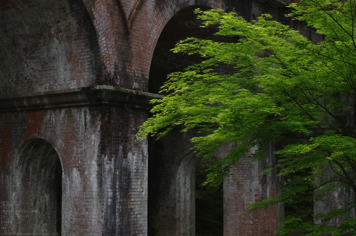 2011_5_南禅寺・新緑_27.jpg
