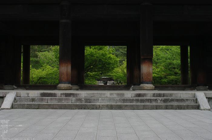 2011_5_南禅寺・新緑_3.jpg