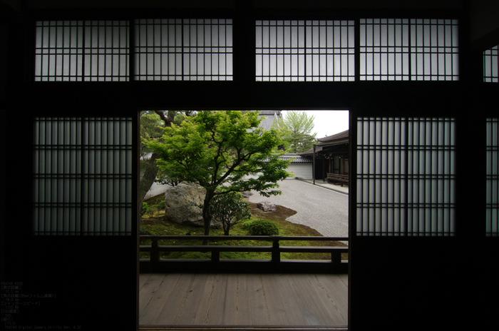 2011_5_南禅寺・新緑_31.jpg