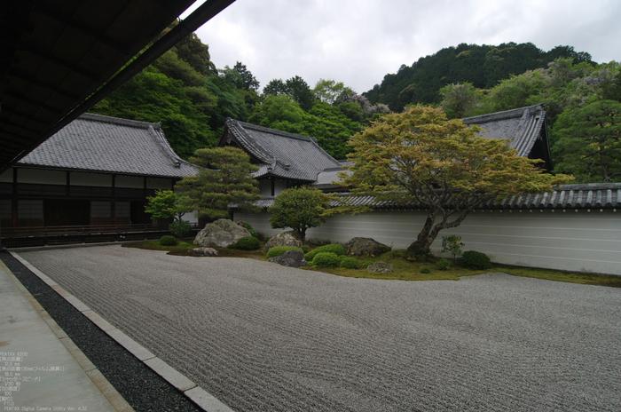 2011_5_南禅寺・新緑_37.jpg