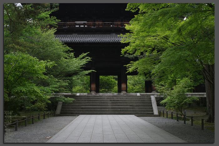2011_5_南禅寺・新緑_top1.jpg