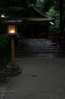 2011_5_大田神社・杜若_10.jpg