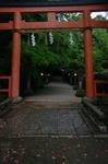 2011_5_大田神社・杜若_8.jpg