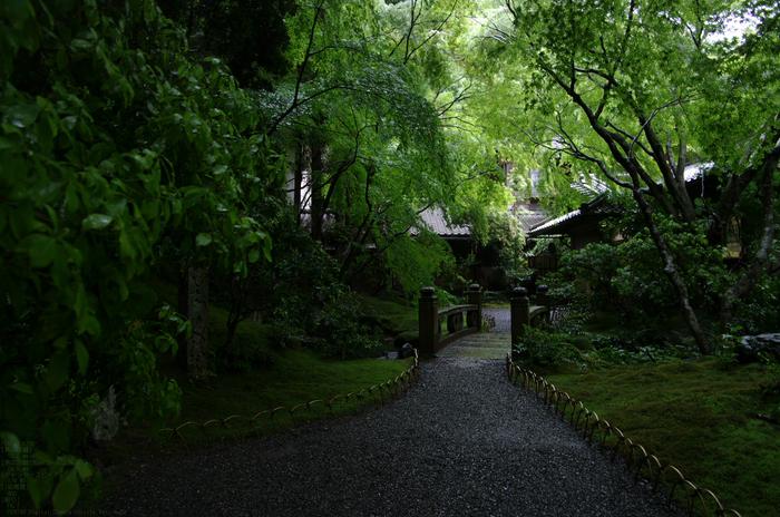 2011_5_瑠璃光院・新緑_3.jpg
