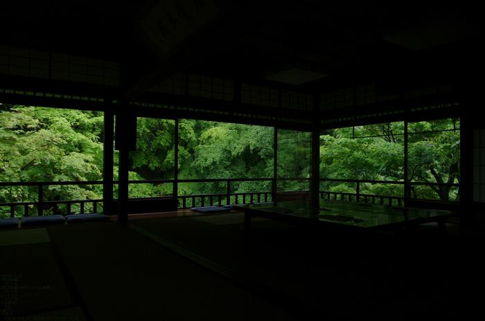 2011_5_瑠璃光院・新緑_8.jpg
