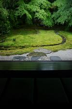 2011_5_瑠璃光院・新緑_ex2.jpg