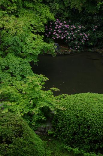 2011_5_随心院_9.jpg