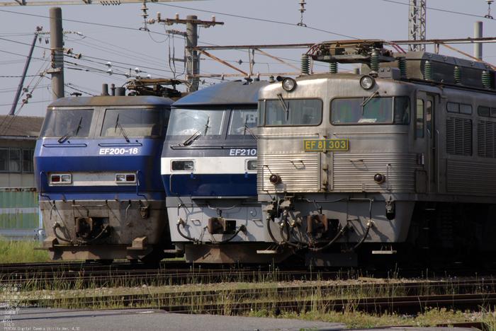 2011_5_EF81・303_2.jpg