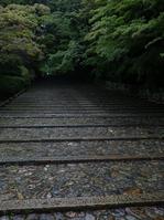 2011_6_光明寺・新緑_ex.jpg