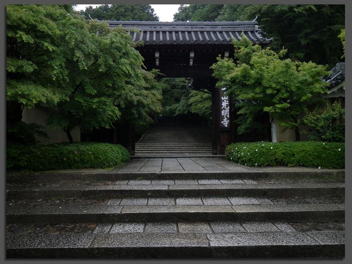 2011_6_光明寺・新緑_top.jpg