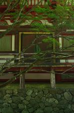 2011_6_神護寺・新緑_20.jpg