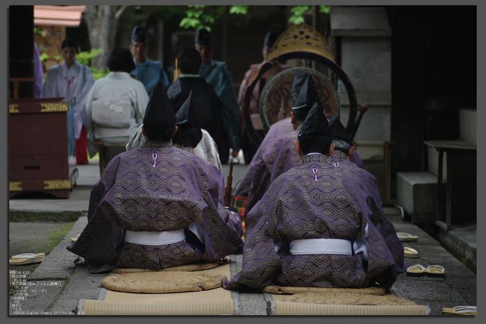 2011_6_藤森神社・紫陽花_top2.jpg