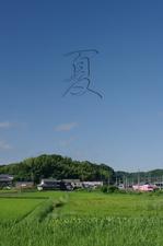 2011_7_伊賀鉄道・夏_top2.jpg