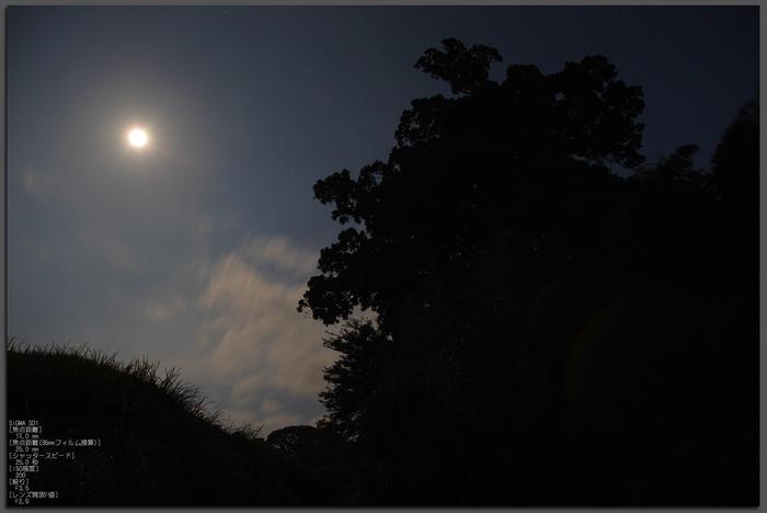 201108_大川杉_top1.jpg