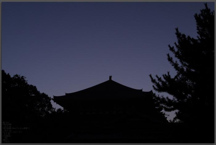 二月堂_201109_top1.jpg