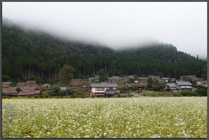 美山_201109_top1.jpg