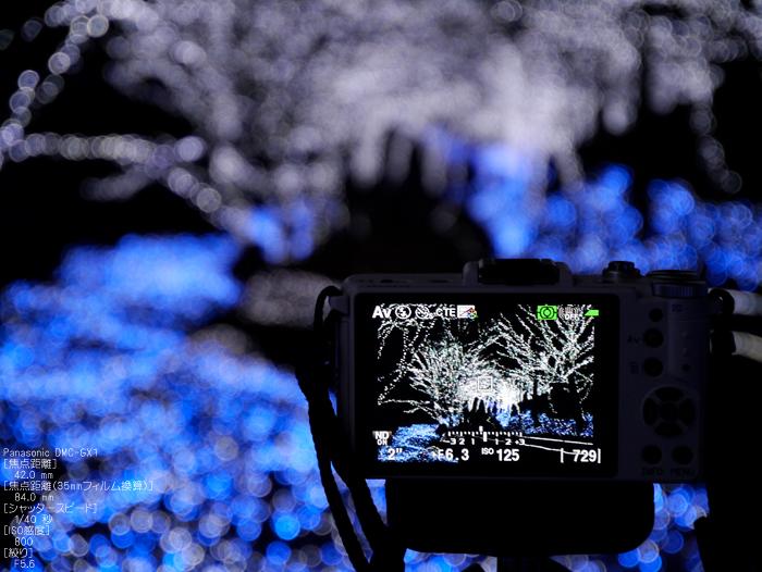 京丹波冬ほたる_26.jpg