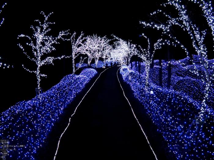 京丹波冬ほたる_7.jpg