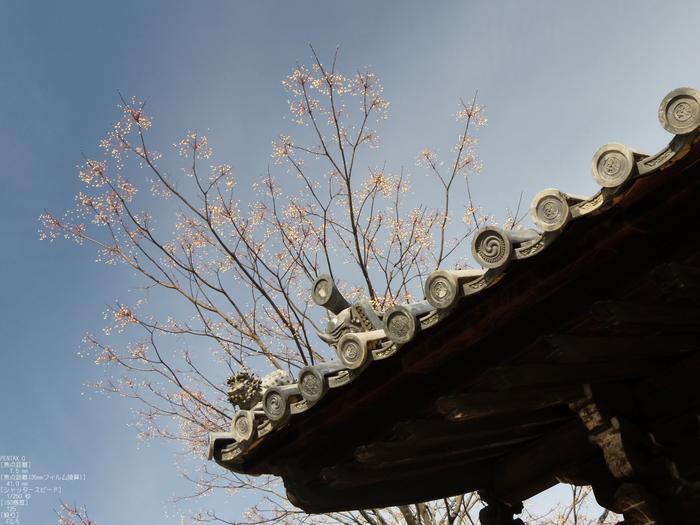 東大寺二月堂_2012_PENTAX_Q_26.jpg