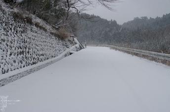 2012冬_月うさぎ_3.jpg