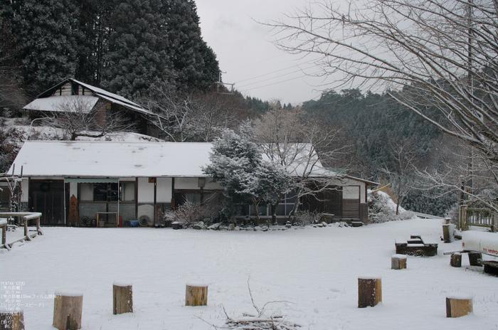 2012冬_月うさぎ_8.jpg