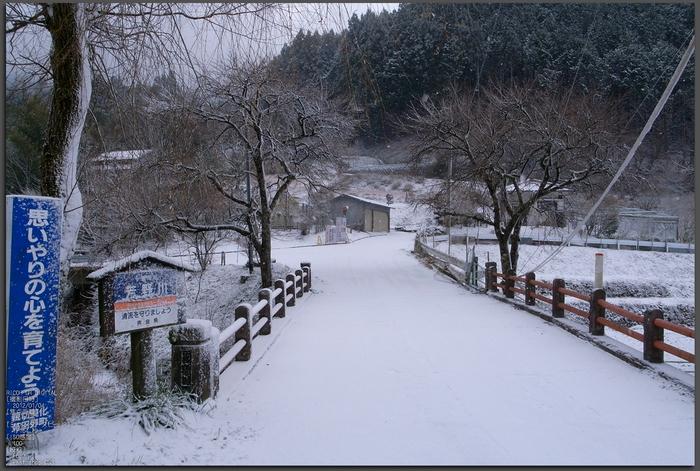 2012冬_月うさぎ_top.jpg