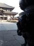 PENTAX_Q_2012東大寺_6.jpg