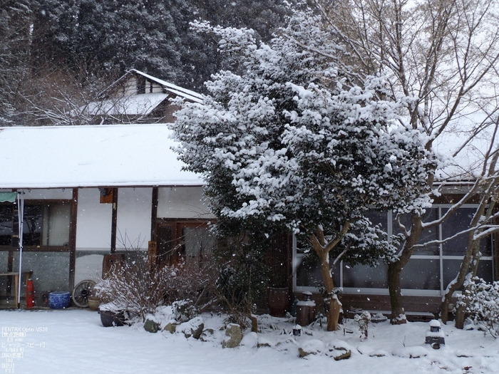 月うさぎ_2012冬_5.jpg