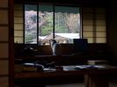 月桜_2012_OLYMPUS_E-M5_15.jpg