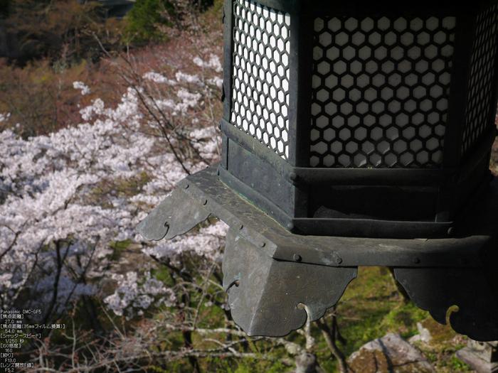 談山神社_桜_2012_GF5_yaotomi_6.jpg