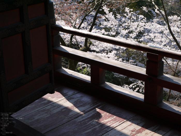 談山神社_桜_2012_GF5_yaotomi_7.jpg