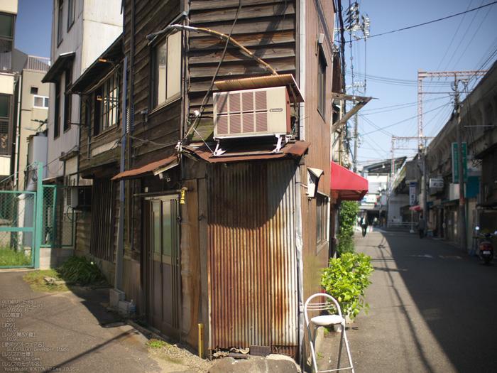 大阪ドーム_みんな大好き!ペット王国_NOKTON17.5mmF0.95_yaotomi_11.jpg