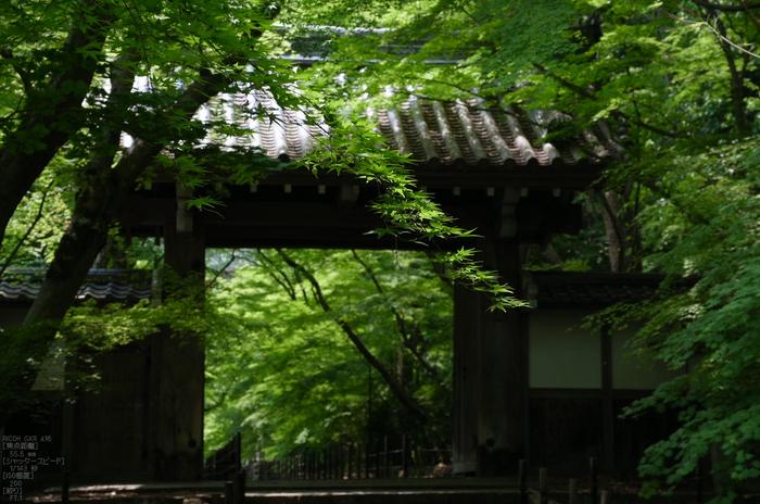 RICOH_GXR_A16_光明寺・新緑_2012_yaotomi_17.jpg