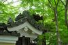 RICOH_GXR_A16_光明寺・新緑_2012_yaotomi_20.jpg