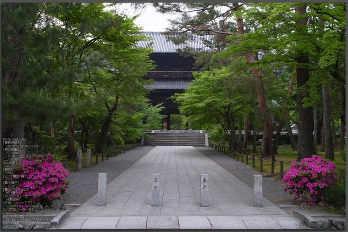 RICOH_GXR_A16_南禅寺・新緑_2012_yaotomi_top1.jpg