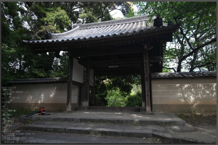 RICOH_GXR_A16_長岳寺・杜若_2012_yaotomi_top1.jpg