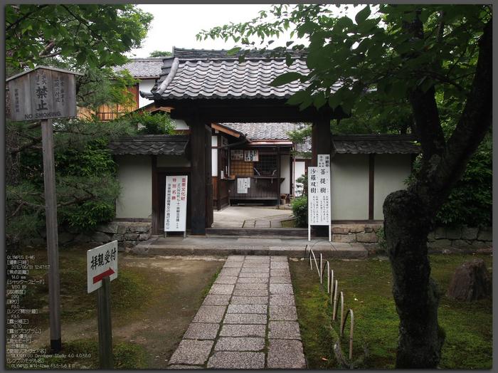 法金剛院_菖蒲_2012_yaotomi_お写ん歩_top1.jpg