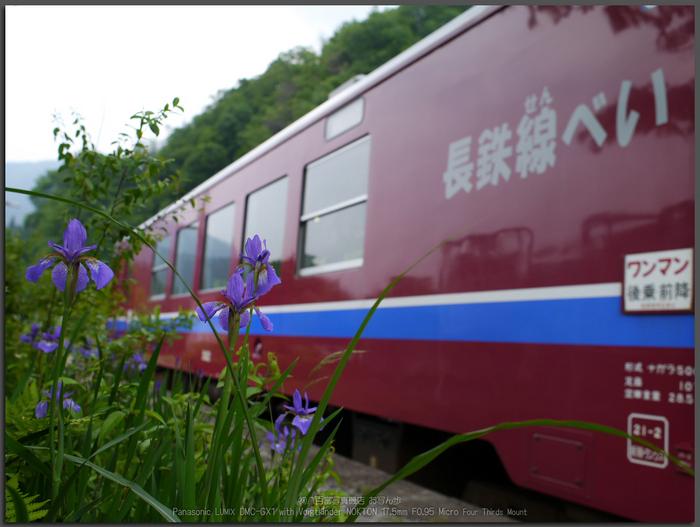 長良川鉄道_ノクトン17.5mm_yaotomi_お写ん歩_top2.jpg