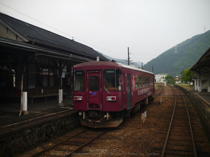 長良川鉄道_NOKTON_yaotomi_osyanpo_17.jpg