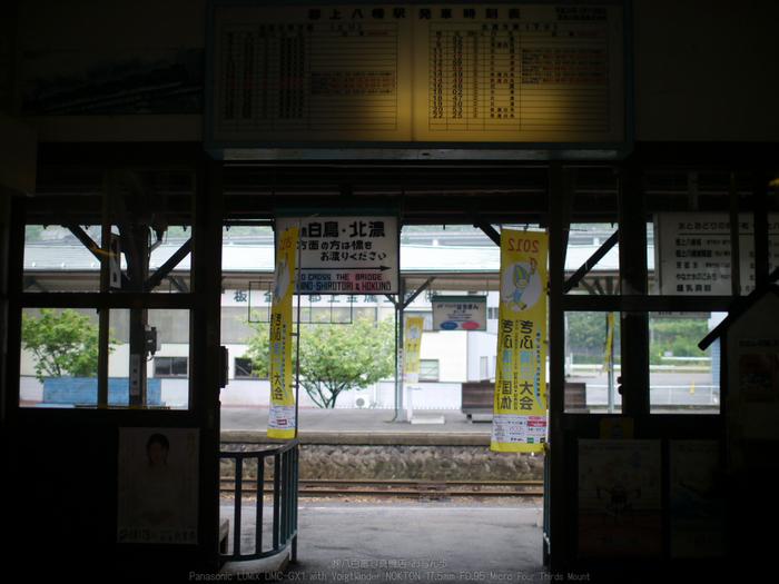 長良川鉄道_NOKTON_yaotomi_osyanpo_3.jpg